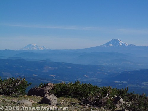 Mt. Rainier (L) and Mt. Adams (R) across the Columbia in Washington, Cooper Spur Trail, Mount Hood National Forest, Oregon