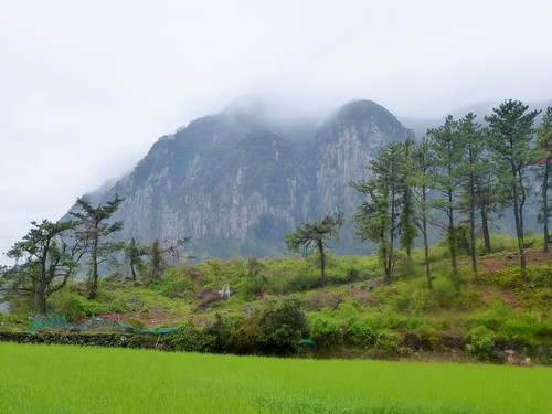 Co-Jejudo-Seogwipo-Sentier Olle 10-Sanbangsan (23)