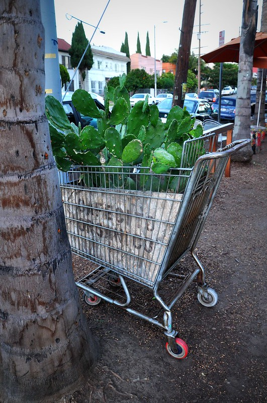 Re-purposed shopping cart