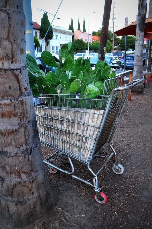 Re-purposed shopping cart