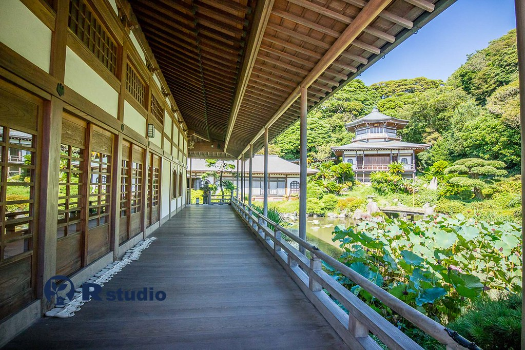 材木座の光明寺:約400m