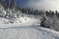 Kam vyrazit o víkendu za sněhem?