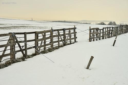Schneefangzaun