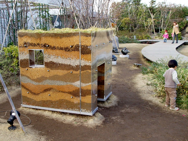 1209 Giant Ant Farm Flickr Photo Sharing