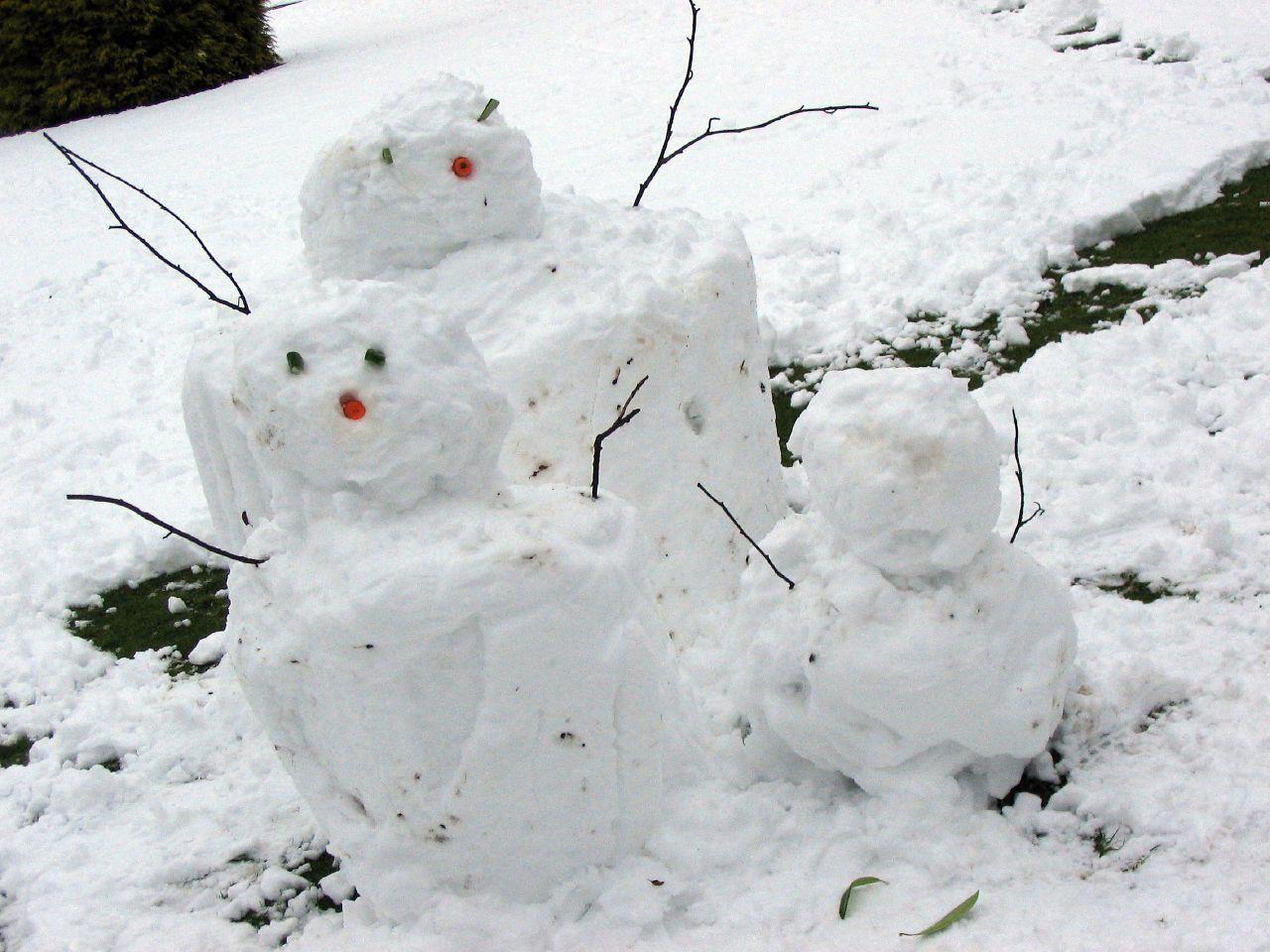 Social Freezing Familie