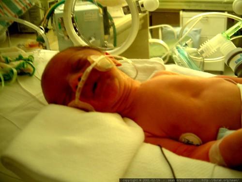flynn, born a little prematurely   dscf1800