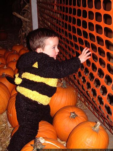 2002-10-14, halloween dscf3070