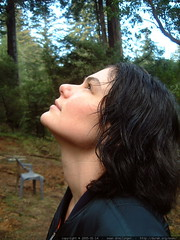 rachel admiring the redwood canopy above a potential…