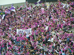 Kyoto Purple Sanga Fans