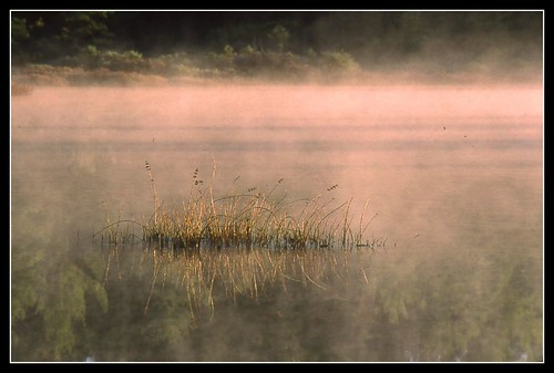 fog newhampshire nh velvia amherst ponemahbog