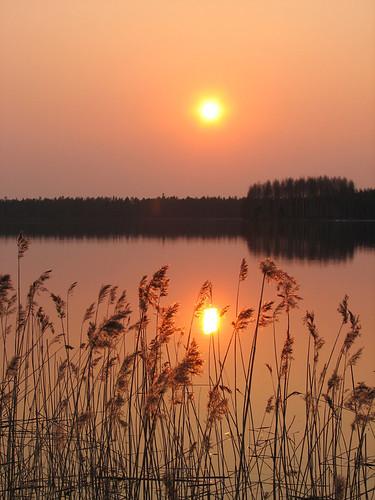 sunset red sun lake reflection water grass yellow suomi finland landscape scenery oulu vesi järvi auringonlasku aurinko punainen heijastus maisemat keltainen heinät