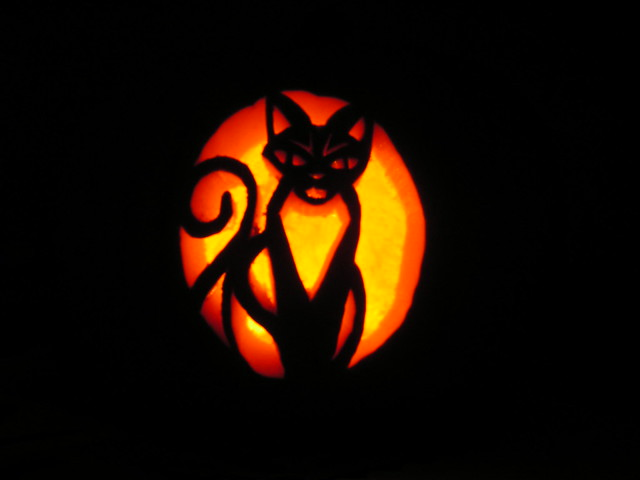 Cat jack o lanterns a gallery on flickr for Pumpkin kitty designs