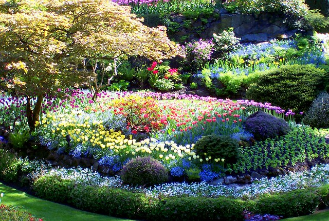 Butchart Gardens On Vancouver Island Flickr Photo Sharing