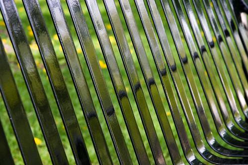 dandelion jail 3606 by blairware