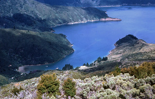 Bay of Many Coves from the Queen Charlotte Track, Marlborough Sounds, New Zealand. 1970