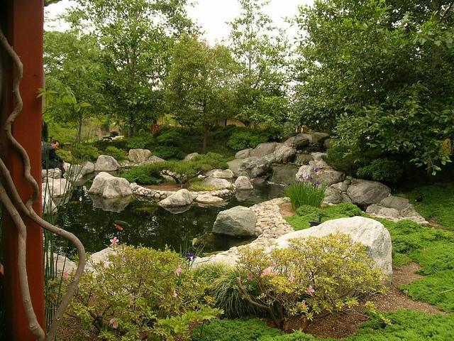 152103109 9291dcf5f1 for Japanese friendship garden san jose koi fish