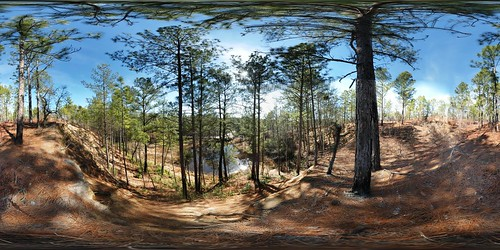 autostitch panorama heritage pine forest geotagged pano 360 sphere henderson preserve aiken equirectangular longleaf 180x360 heritagepreserve geolat3361025651473 geolon81741118490749