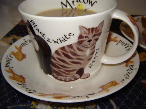 Cat lover's tea time