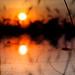 reflection by John √