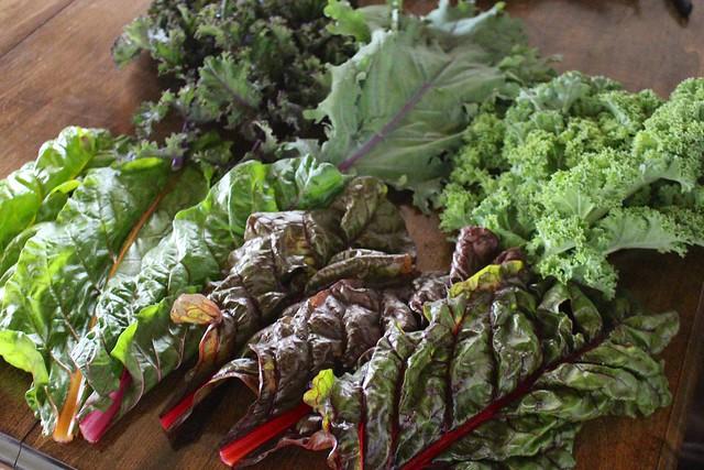 kale-swiss-chard