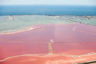 The Camargue (Rhône Delta) - Languedoc - Salt flats