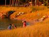 Photographing the Sunset - Elk Rapids - Michigan
