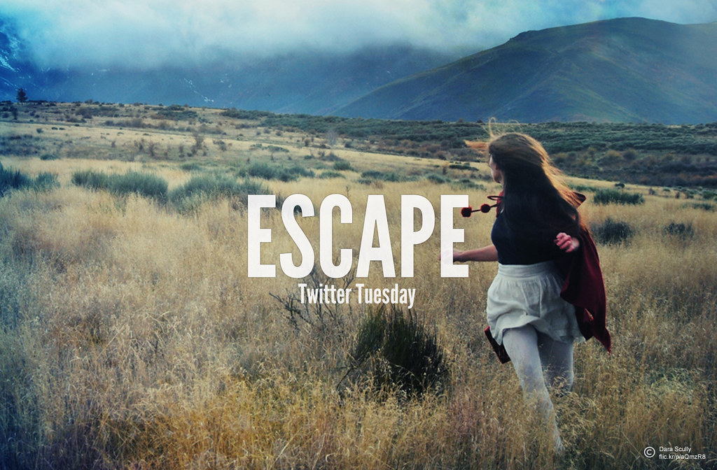 Twitter Tuesday Escape
