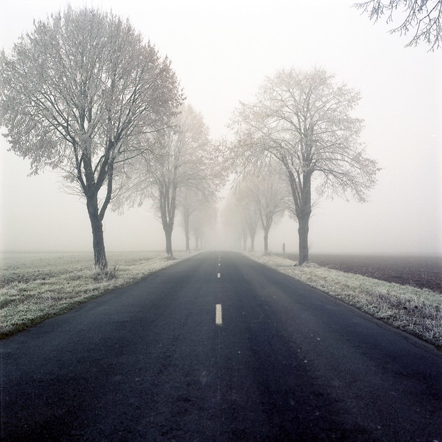 Here, where the road leads me
