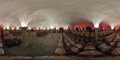 Barrel warehouse in the vaulted cellar