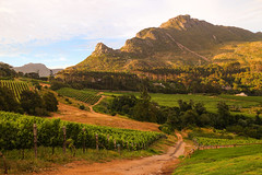 Constantia Glen, Cape Town, South Africa.