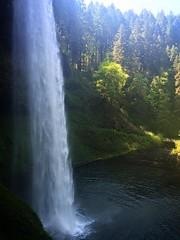 Silver Falls, Oregon.