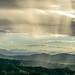 Rain Shower, Lamington National Park, QLD by stephenk1977
