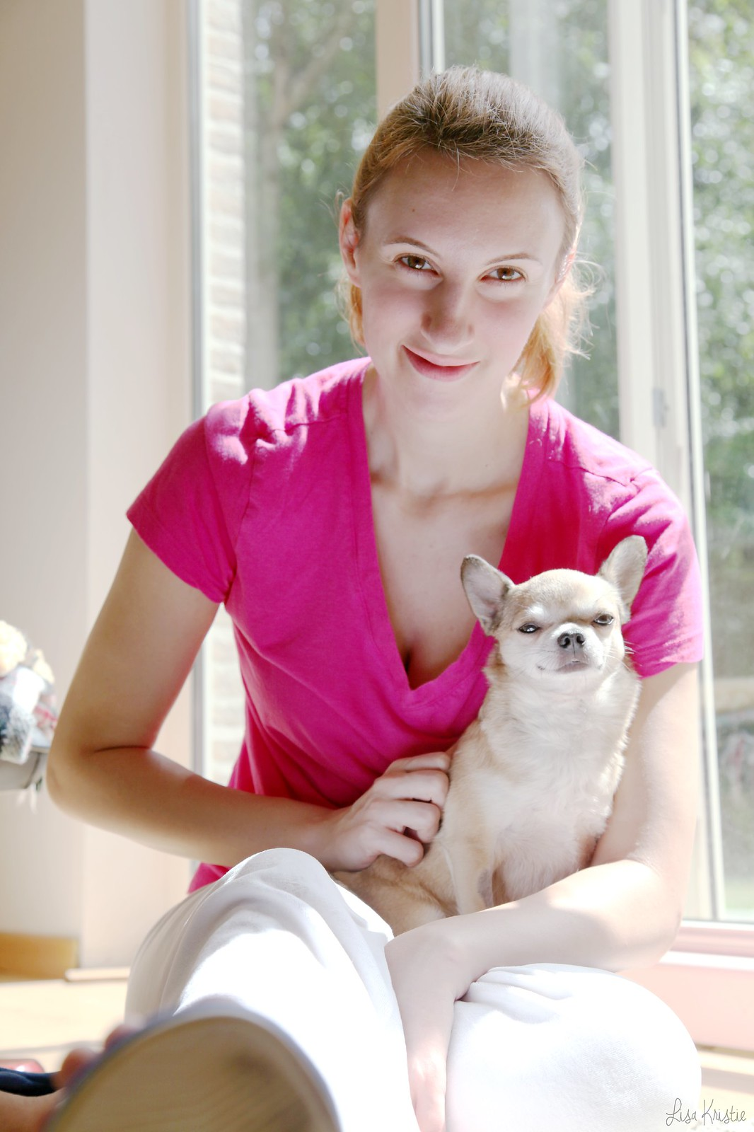 chihuahua portrait female woman holding pet wolf wolfthedog beige short haired smooth coat male dog puppy sitting on lap tiny small cute adorable home