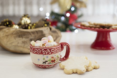 Winter hot drink, cacao with marshmallows and chri…