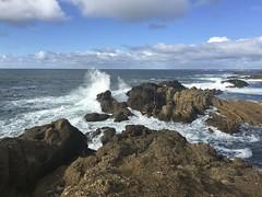 Point Lobos Seashore/California King Tide
