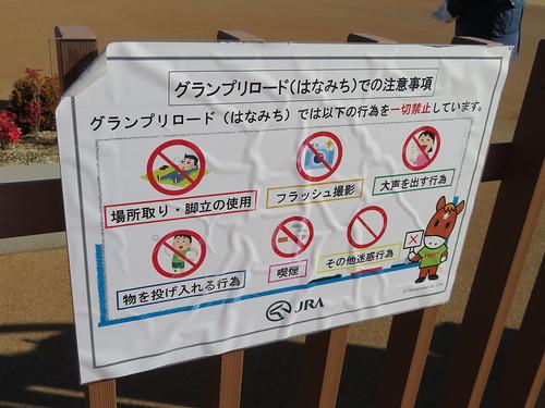 中山競馬場のグランプリロードでの禁止行為