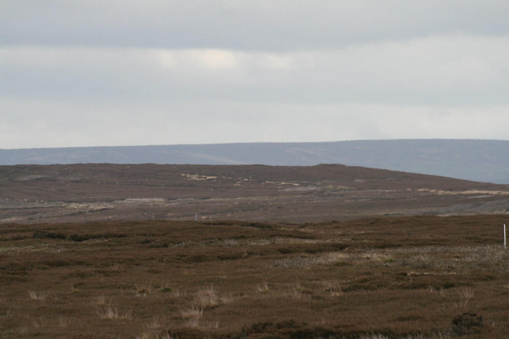 "Across Gisborough Moor to the ""summit"""