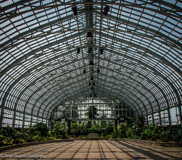 open greenhouse (1 of 1)