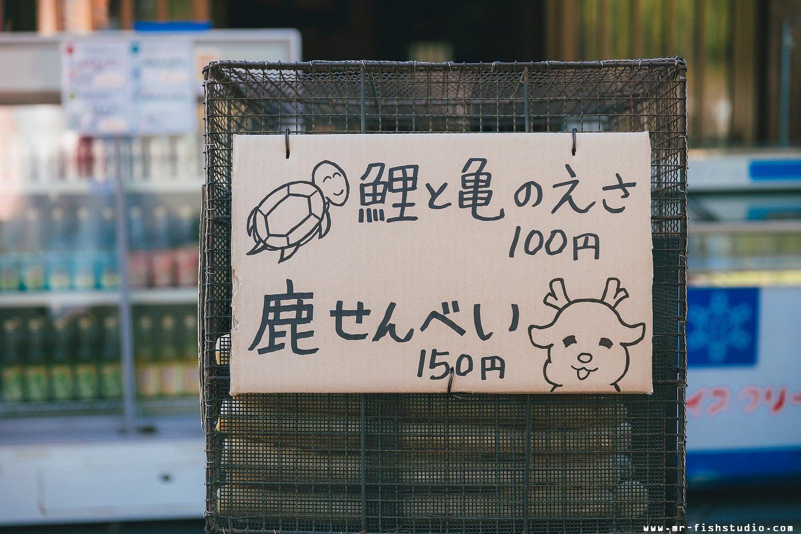 1111靜兒+志憲 (20)
