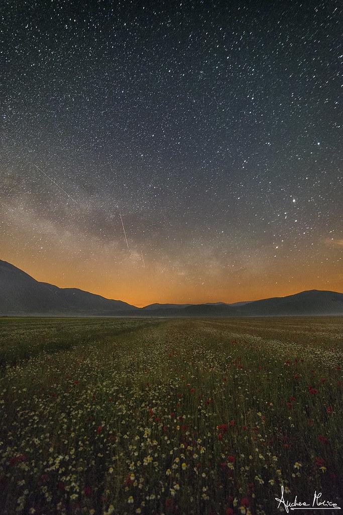 Night on the plain