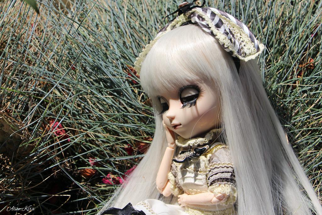 Alice, Pullip Classical Alice Sepia ♥ (News Page 3 !) 19548550362_a71cb1c09d_b