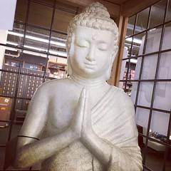 12/31/16 Peace and Joy