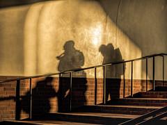 Schattenriss / silhouette