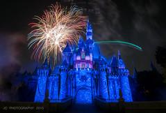 Disneyland Forever - Tink