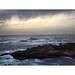 Point Lobos by sabphotography97