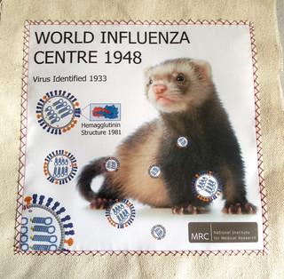 039-Influenza