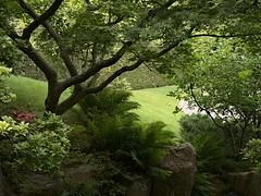 Gärten der Welt July 2015