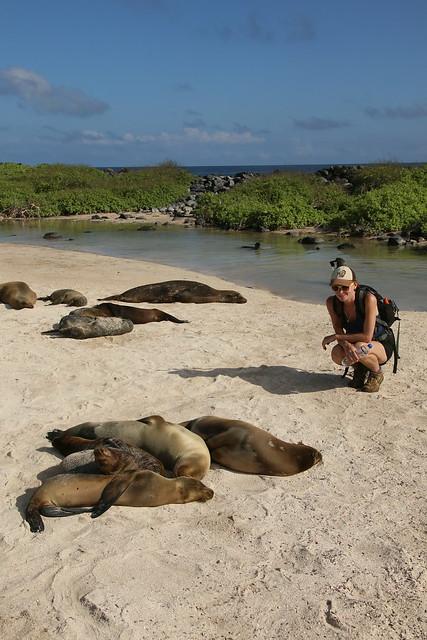 Galapagos Island.  Ecuador.