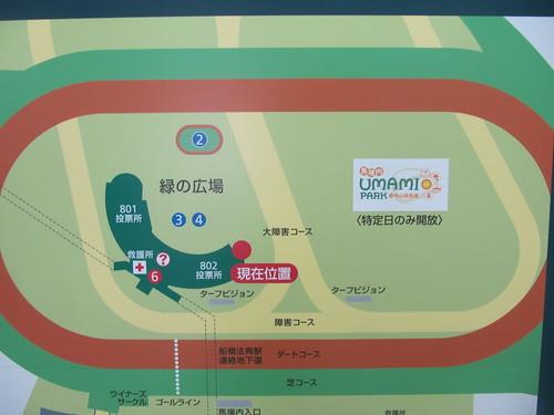 中山競馬場の内馬場全体図