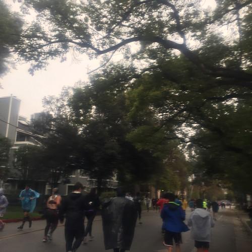 Pasadena Half Marathon 2017